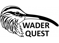 Wader Quest