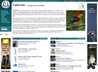 Bird Watching,Resources for Bird Watching by the Fat Birder