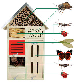 Best for Birds Large insect house