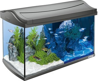 Tetra Aqua-Art Led aquarium 60L