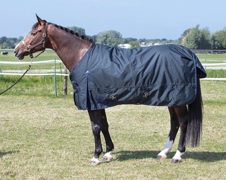 Harry's Horse Thor Ebony regendeken 200 gram
