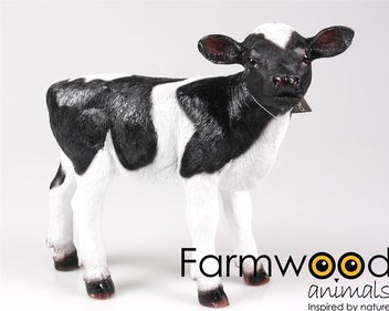 Farmwood Animals Portrait Calf garden image