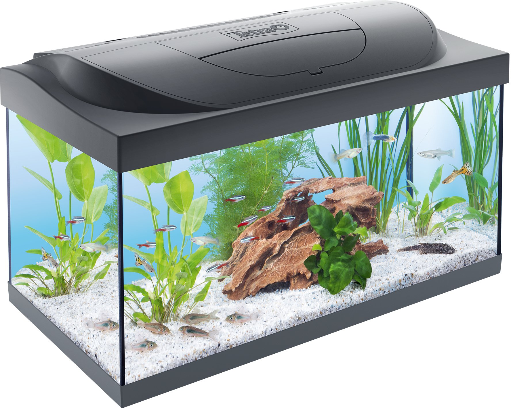 Tetra starter line led aquarium kopen frank for Tetra acquario