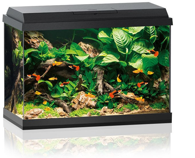juwel primo 70 led aquarium kopen frank. Black Bedroom Furniture Sets. Home Design Ideas